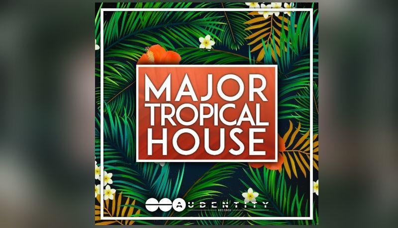 Major Tropical House